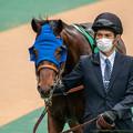 Photos: レインフロムヘヴン(1)【201123東京11R東スポ杯2歳S】