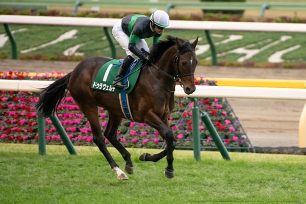 ドゥラヴェルデ(3)【201123東京11R東スポ杯2歳S】