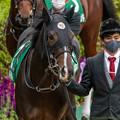 Photos: タイトルホルダー(2)【201123東京11R東スポ杯2歳S】