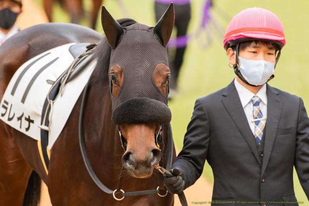 ラレイナ・パドック2[201206中山05R新馬戦]