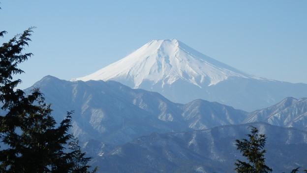 Photos: 富士山(1)