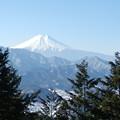 Photos: 富士山(5)