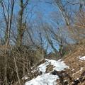 Photos: 陽だまり登山道