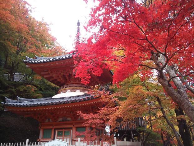 牛滝山大威徳寺