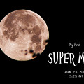 My First Super Moon ♪