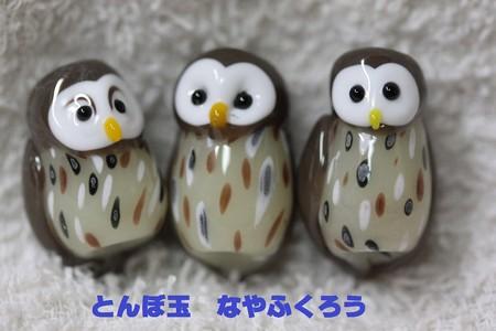 とんぼ玉 H25.7.7 1