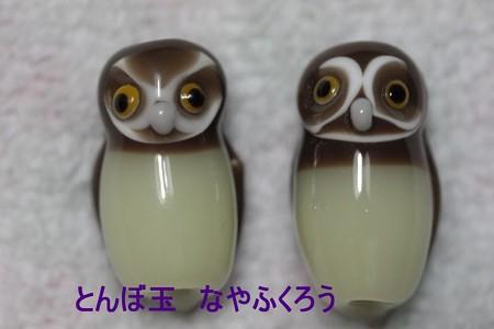 とんぼ玉 H25.9.21
