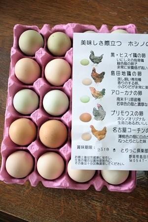 とりっこクラブホシノの卵
