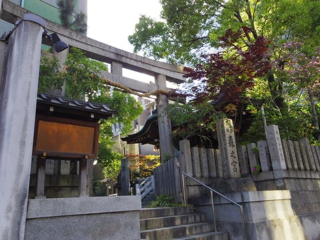 鵲森宮(かささぎもりのみや:森ノ宮神社)