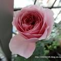 Photos: DSC01072