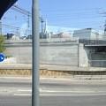 Photos: 2013-07-25 11.34.01