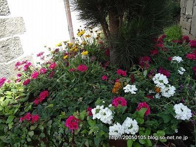 Photos: DSC02211