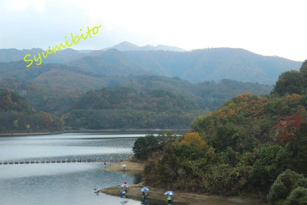 前川ダム 2013年11月初旬