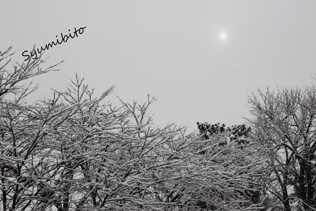 2013.12.14.冬到来