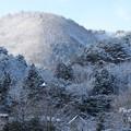 Photos: 故郷 2014.1