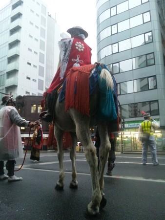 http://photozou.jp/p/img/177175453