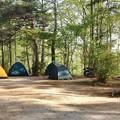 キャンプ場の風景
