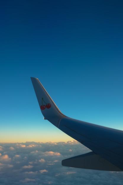 Photos: wing
