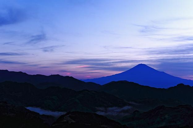写真: 『眠』 ~吉原 夜明け前~