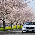 Photos: 『春彩。。。』