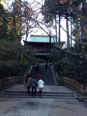 20131123円覚寺(2)