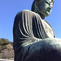 Photos: 20131123鎌倉大仏