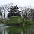 高田城跡公園の桜(パノラマ写真)