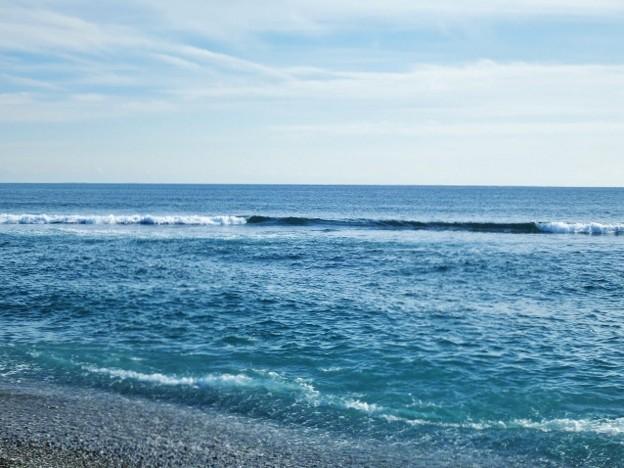 土佐湾の波