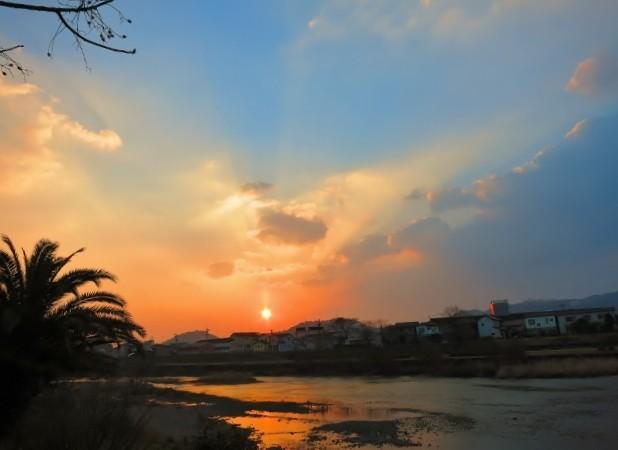 暁の鏡川.14