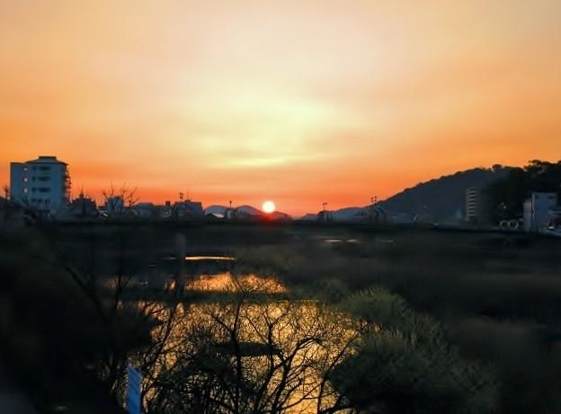 暁の鏡川.24