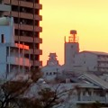 Photos: 夜明けの高知城