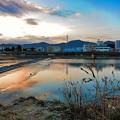 Photos: 鏡川の朝空.3