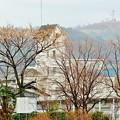 Photos: 栴檀の家