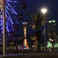 写真: 大観覧車とポートタワー