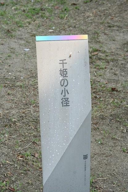 千姫の小径?