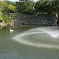 明石公園の噴水?