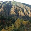 十勝岳温泉の紅葉?