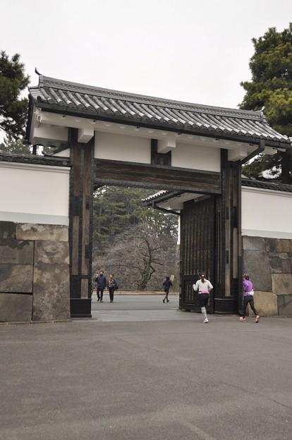 桜田門 (高麗門)?