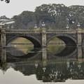 Photos: 皇居正門石橋?
