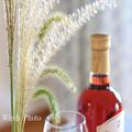 Photos: ススキとワイン