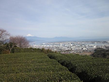 富士山@日本平
