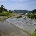 Photos: 棚田の田植え