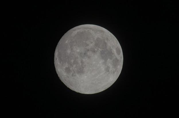 Photos: スーパームーンイブの月。