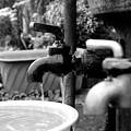 みちばたの井戸