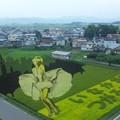 2013年 田舎館村の田んぼアート