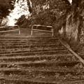 学校への坂道を・・・