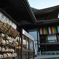 写真: 寺に願いを☆