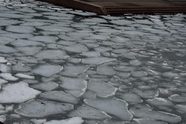 Photos: 流氷っぽい光景