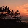 岬の夕暮れ