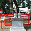 Photos: 箭弓稲荷神社・10
